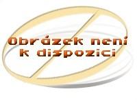 GUZZANTI GZ 338